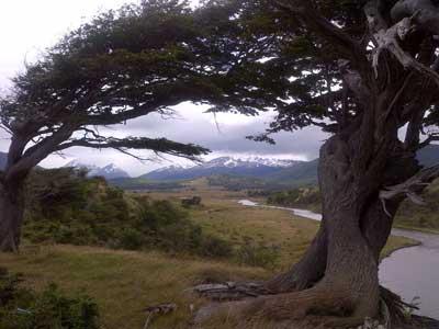 Rural landscape, Tierra del Fuego