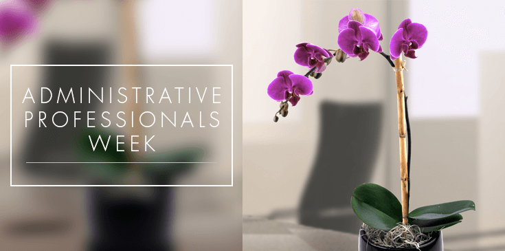 April 22-28 proclaimed 'Administrative Professionals Week ...