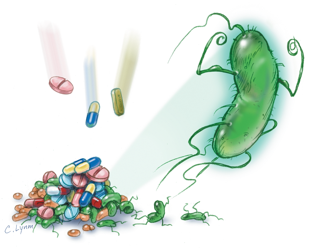 antimicrobial Antimicrobial protection & fungi fungi are multi-celled organisms with structures analogous but not identical to plants they can be found in air, in soil, on plants, and in water.